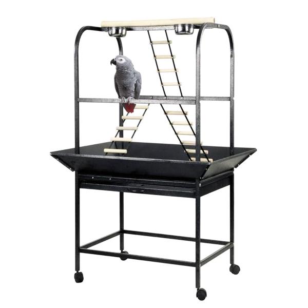 Papegaaien speelstandaard Anastasia grijs