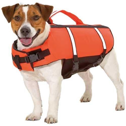 Hondenzwemvest Neon Oranje | Ook tegen onderkoeling