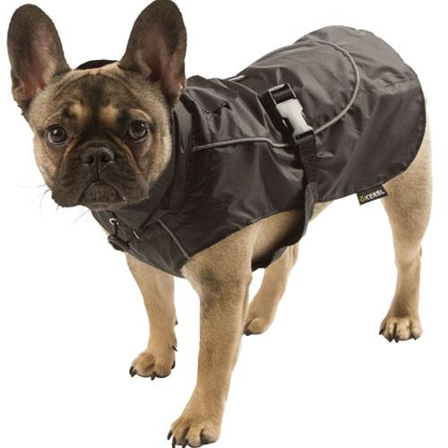Hondenkleding | Hondenjas Forks zwart