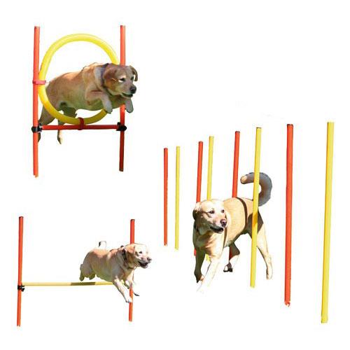 3 delige Agility Set | Actief met je hond