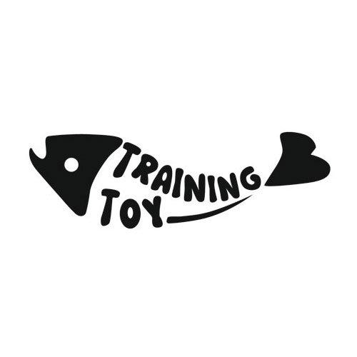 LED Pointer Fish | Trainingsspeelgoed voor katten