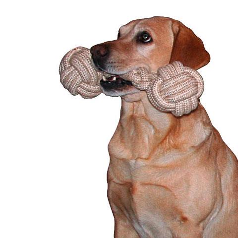 Gebitsverzorgend Hondenspeelgoed | Halter XL 12x40cm.