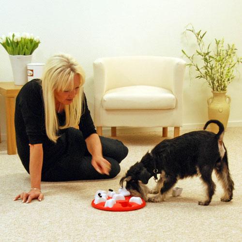 Hondenspeelgoed | Nina Ottosson Dog Smart Kunststof