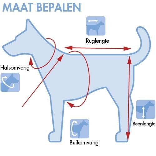 Honden veiligheidsvest - Maat bepalen