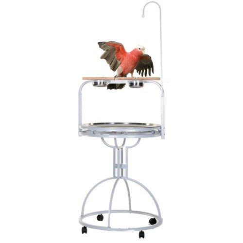 Papegaaienstandaard | Speelstandaard Julia Wit