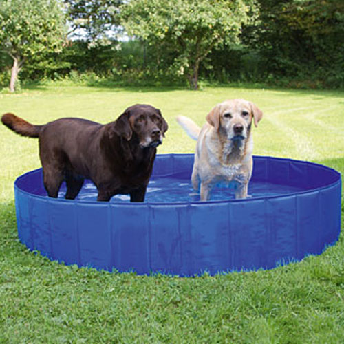 Hondenzwembad 160cm. | Zwembad voor honden