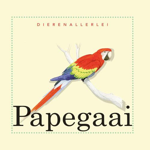 Dierenallerlei Papegaai