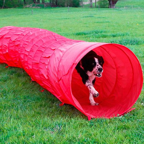 Agility Hondentunnel Rood 5 meter x 60cm.
