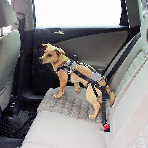 Autoveilig Hondentuigje Travel Protect | Veiligheidstuig voor in de auto