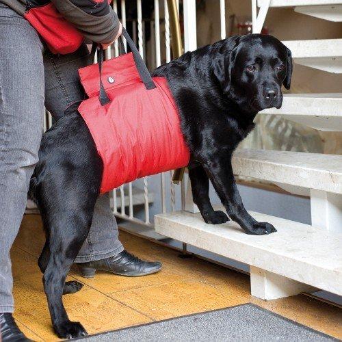 Honden Draaghulp | Geschikt voor grote honden