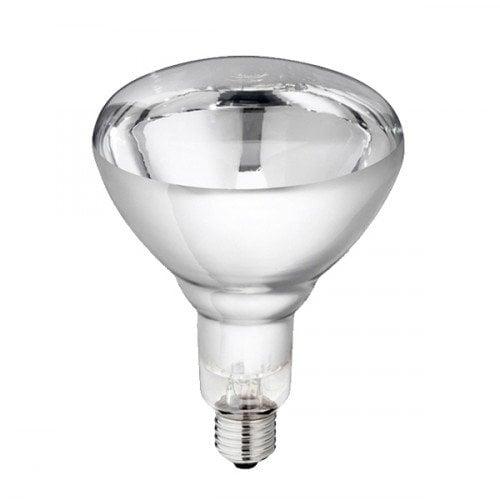 Warmtelamp 250Watt Transparant Gehard