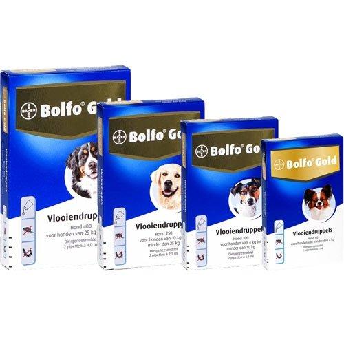 Bayer Bolfo Gold 400 Hond   Beschermt tegen vlooien en vlooienlarven