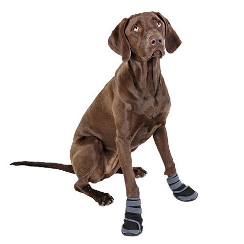 Hondenschoen Active Grijs/Zwart |
