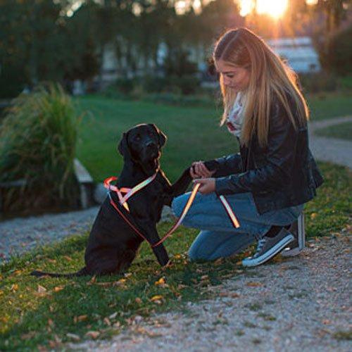 Reflecterend Hondentuigje Norwegian buiten