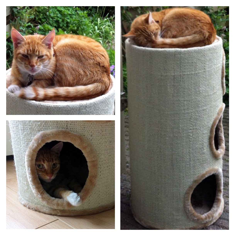 Krabton bubba | Een tevreden kat met zijn nieuwe krabton