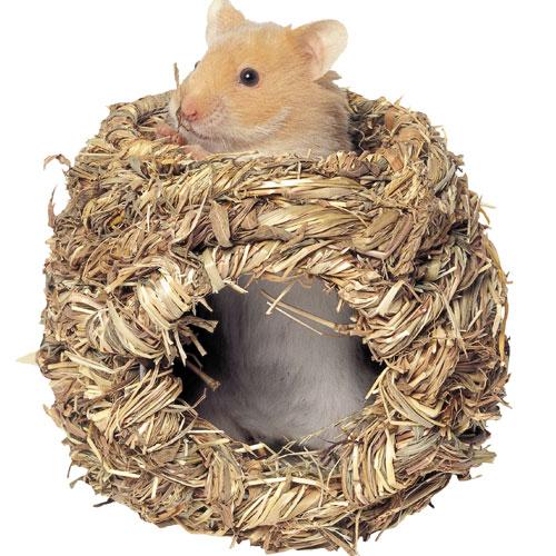Huisjes en spelen | Hamster grasnest biscuit