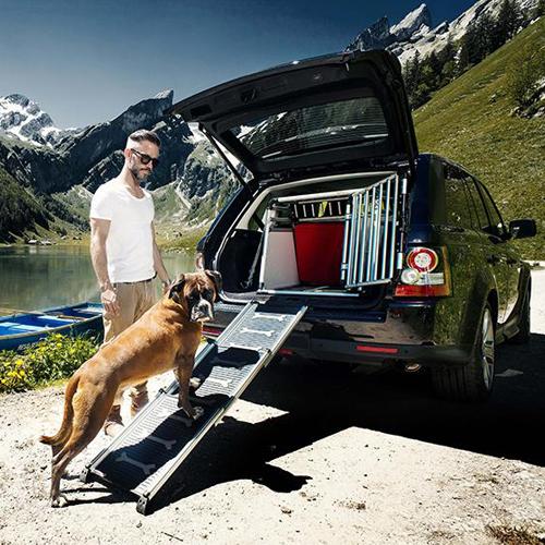 Easy Steps hondenloopplank voor honden tot 100kg