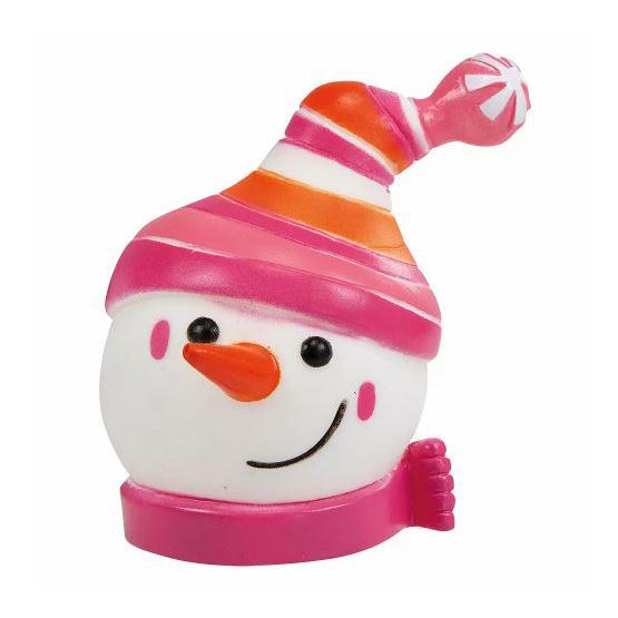 Sneeuwpop Met Muts