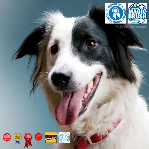 Magische Hondenborstel | Magic Brush gewonnen Awards