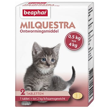 Beaphar Milquestra Kleine Kat/Kitten